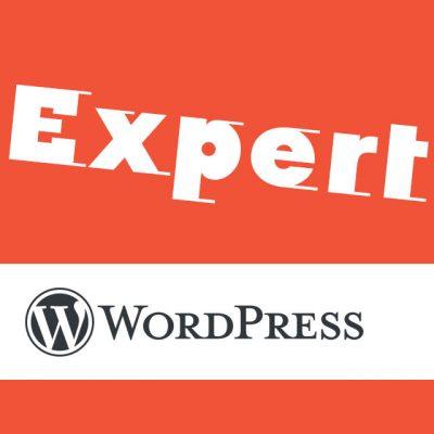 ultimative wordpress betreuung, sicherheit, ladegewschindigkeit, updates, content